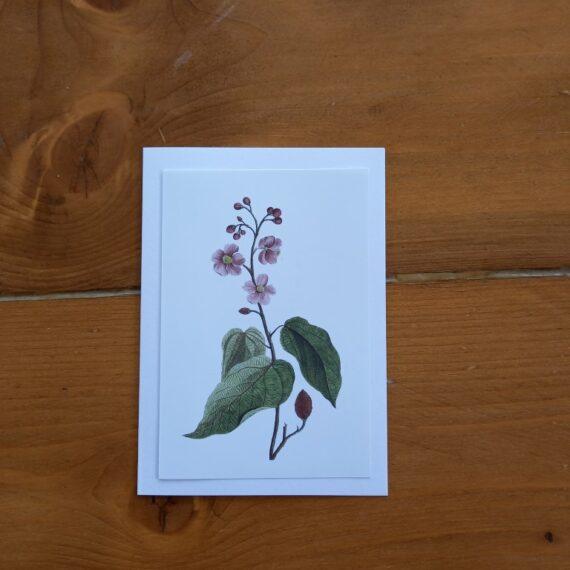 Handgemaakt kaarten - bloemen 01