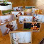 Handgemaakte kaarten - Teddyberen